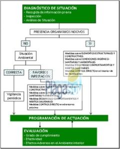 Certificado DDD desinfecciones